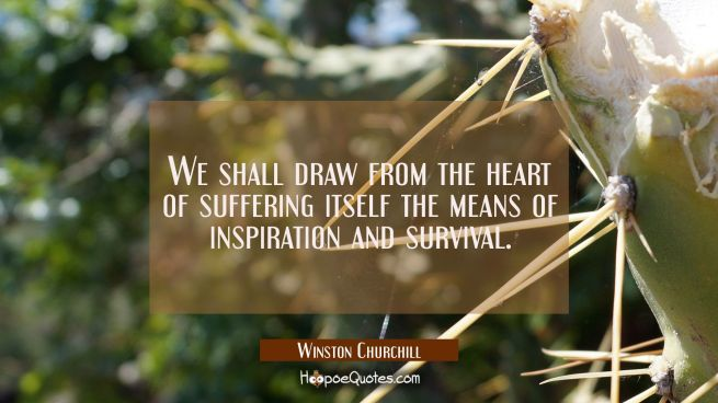 We shall draw from the heart of suffering itself the means of inspiration and survival.