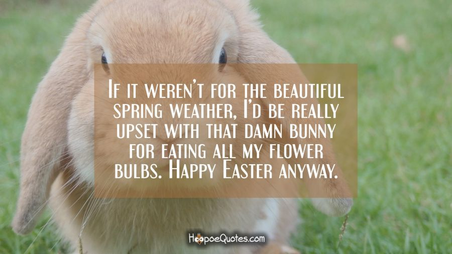 If it weren't for the beautiful spring weather, I'd be really upset with that damn bunny for eating all my flower bulbs. Happy Easter anyway. Easter Quotes