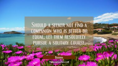 Should a seeker not find a companion who is better or equal, let them resolutely pursue a solitary course. Buddha Quotes