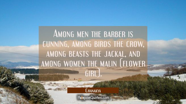 Among men the barber is cunning, among birds the crow, among beasts the jackal, and among women the