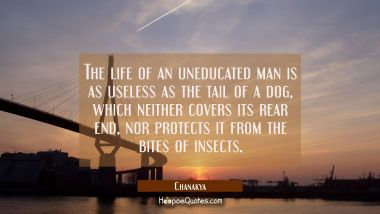 The life of an uneducated man is as useless as the tail of a dog which neither covers its rear end Chanakya Quotes