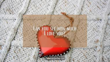 Can you see how much I love you? I Love You Quotes