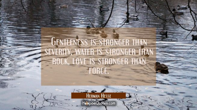Gentleness is stronger than severity, water is stronger than rock, love is stronger than force.