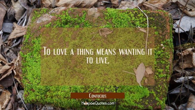 To love a thing means wanting it to live