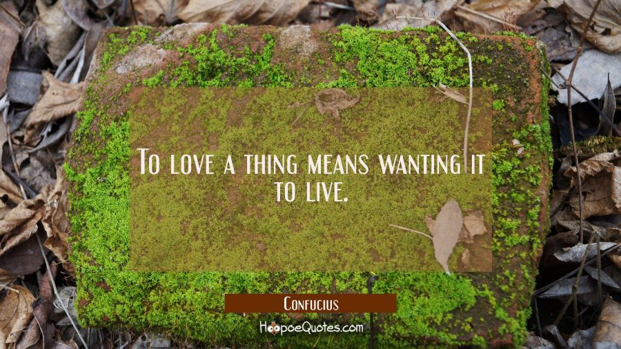 To love a thing means wanting it to live Confucius Quotes