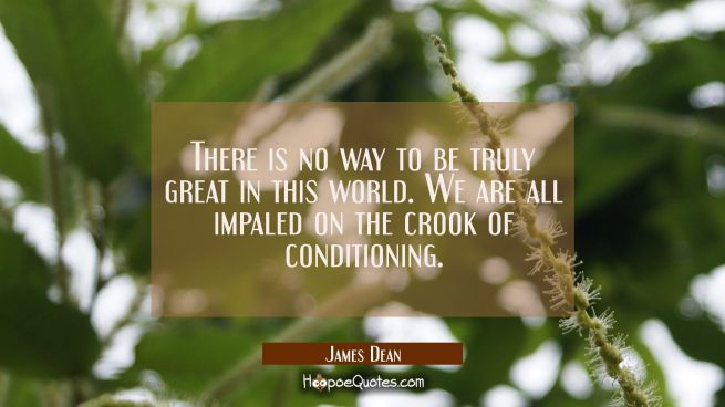 There is no way to be truly great in this world. We are all impaled on the crook of conditioning.