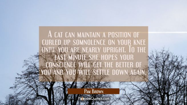 A cat can maintain a position of curled up somnolence on your knee until you are nearly upright. To