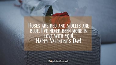 Roses are red and violets are blue, I've never been more in love with you! Happy Valentine's Day! Valentine's Day Quotes