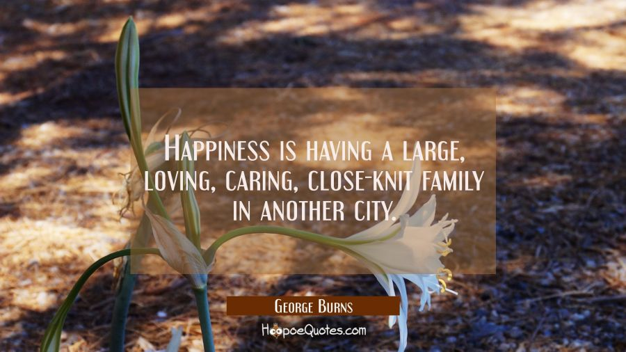 Happiness is having a large loving caring close-knit family in another city. George Burns Quotes