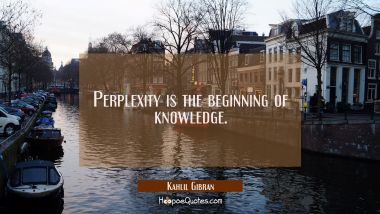 Perplexity is the beginning of knowledge. Kahlil Gibran Quotes