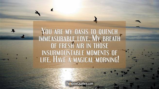 You are my oasis to quench immeasurable love. My breath of fresh air in those insurmountable moments of life. Have a magical morning!