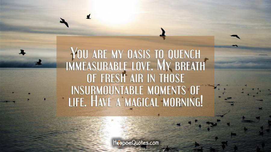 You are my oasis to quench immeasurable love. My breath of fresh air in those insurmountable moments of life. Have a magical morning! Good Morning Quotes