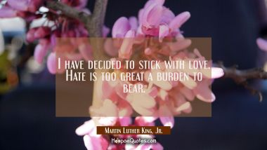 I have decided to stick with love. Hate is too great a burden to bear. Martin Luther King, Jr. Quotes