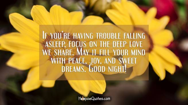 If you're having trouble falling asleep, focus on the deep love we share. May it fill your mind with peace, joy, and sweet dreams. Good night!