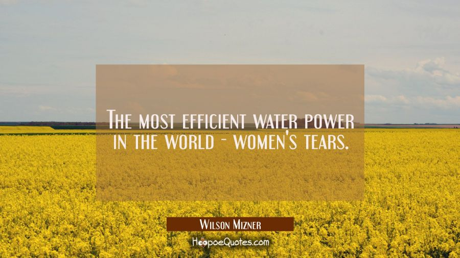 The most efficient water power in the world - women's tears. Wilson Mizner Quotes