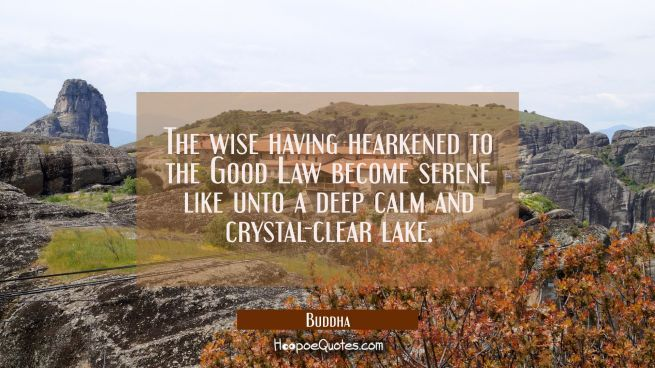 The wise having hearkened to the Good Law become serene like unto a deep calm and crystal-clear lak