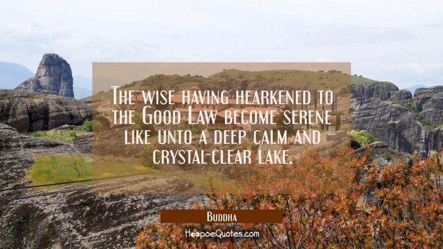 The wise having hearkened to the Good Law become serene like unto a deep calm and crystal-clear lak Buddha Quotes