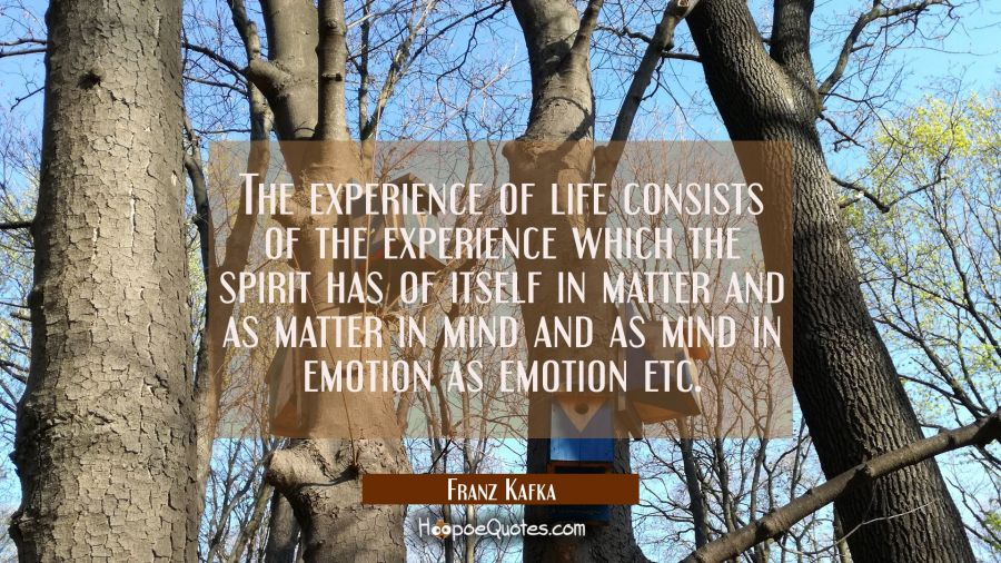The experience of life consists of the experience which the spirit has of itself in matter and as m Franz Kafka Quotes