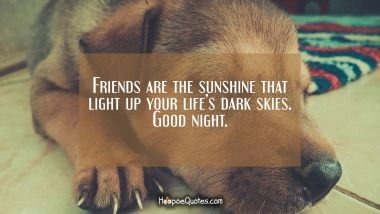 Friends are the sunshine that light up your life's dark skies. Good night. Good Night Quotes