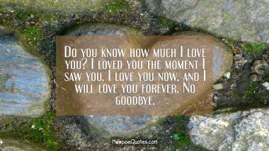 Do you know how much I love you? I loved you the moment I saw you. I love you now, and I will love you forever. No goodbye. I Love You Quotes