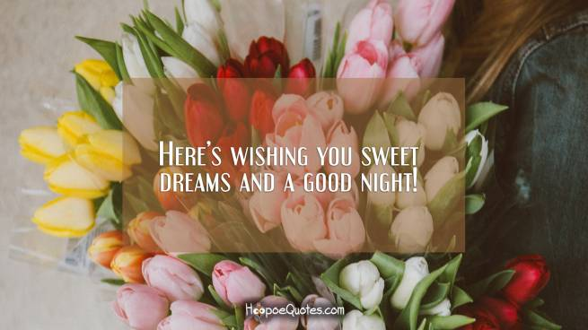 Here's wishing you sweet dreams and a good night!
