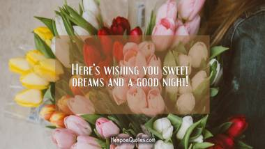 Here's wishing you sweet dreams and a good night! Good Night Quotes