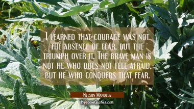 I learned that courage was not the absence of fear but the triumph over it. The brave man is not he