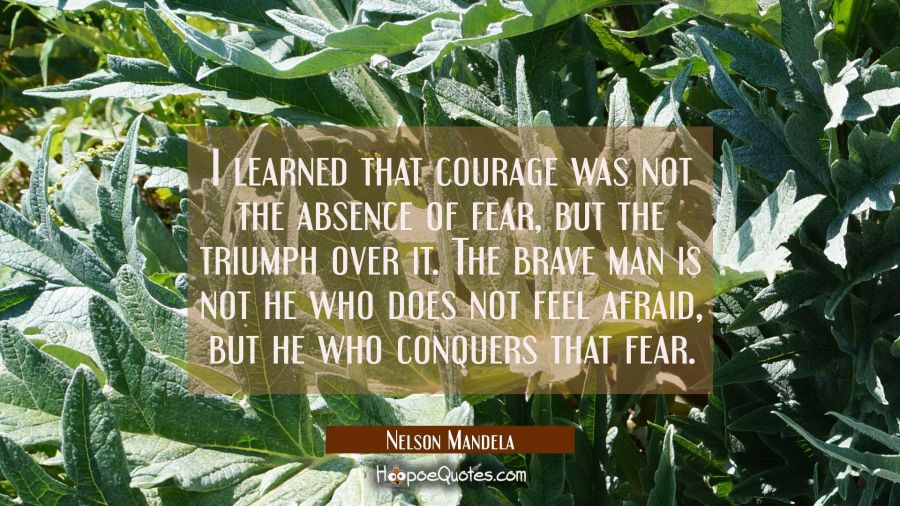 I learned that courage was not the absence of fear but the triumph over it. The brave man is not he Nelson Mandela Quotes