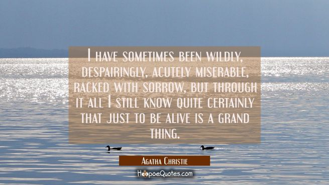 I have sometimes been wildly despairingly acutely miserable racked with sorrow but through it all I