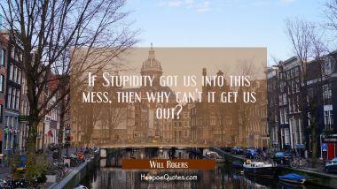 If Stupidity got us into this mess then why can't it get us out?