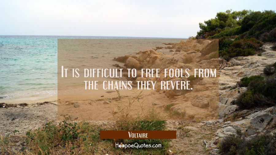 It Is Difficult To Free Fools From The Chains They Revere Hoopoequotes