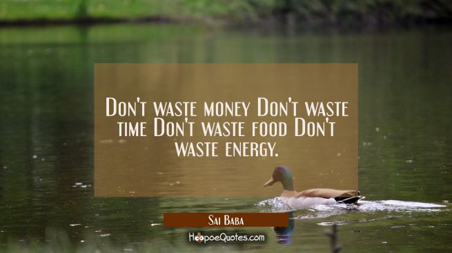 Don't waste money Don't waste time Don't waste food Don't waste energy.