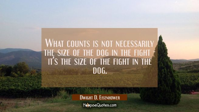 What counts is not necessarily the size of the dog in the fight - it's the size of the fight in the