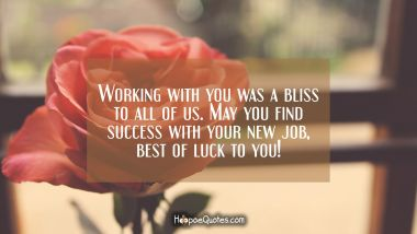 Working with you was a bliss to all of us. May you find success with your new job, best of luck to you!