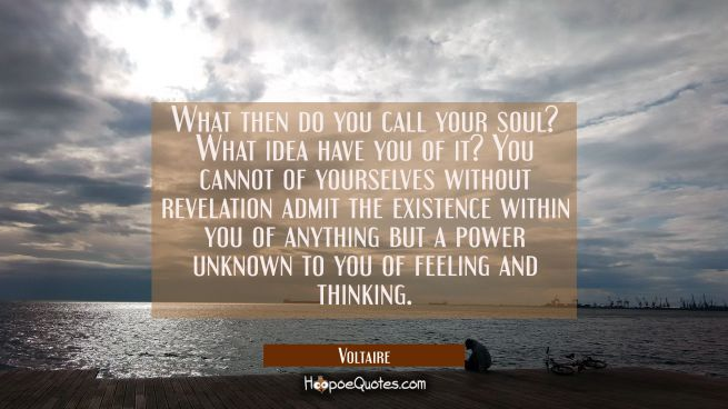 What then do you call your soul? What idea have you of it? You cannot of yourselves without revelat