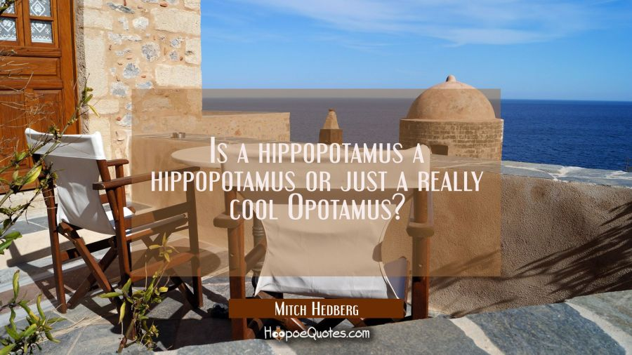 Is a hippopotamus a hippopotamus or just a really cool Opotamus? Mitch Hedberg Quotes