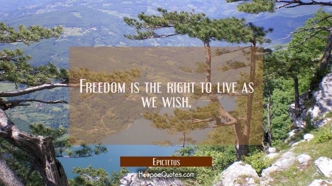 Freedom is the right to live as we wish.
