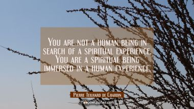 You are not a human being in search of a spiritual experience. You are a spiritual being immersed i
