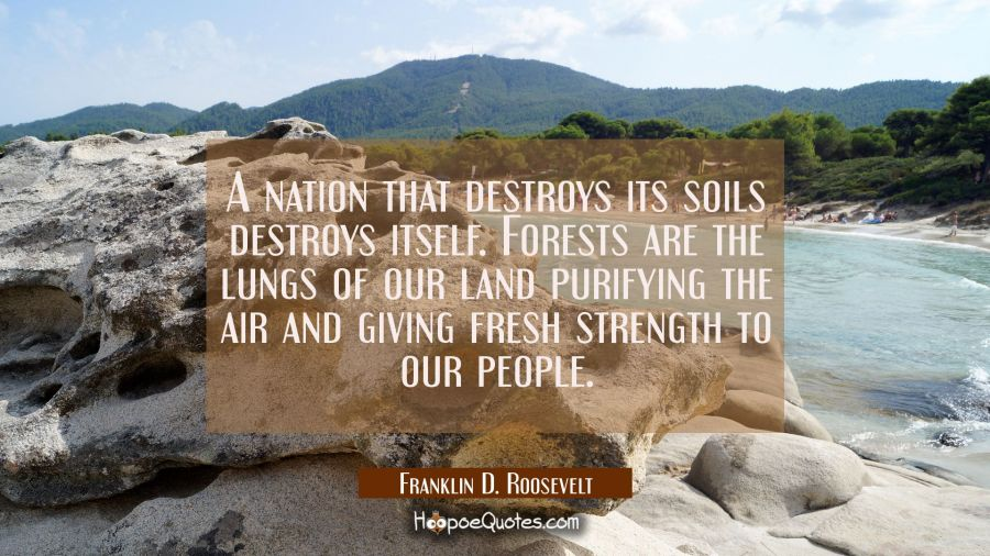 A nation that destroys its soils destroys itself. Forests are the lungs of our land purifying the a Franklin D. Roosevelt Quotes