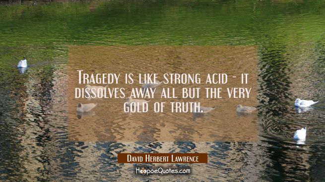 Tragedy is like strong acid - it dissolves away all but the very gold of truth.