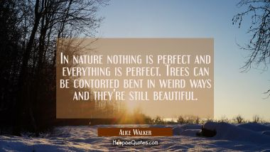 In nature nothing is perfect and everything is perfect. Trees can be contorted bent in weird ways a