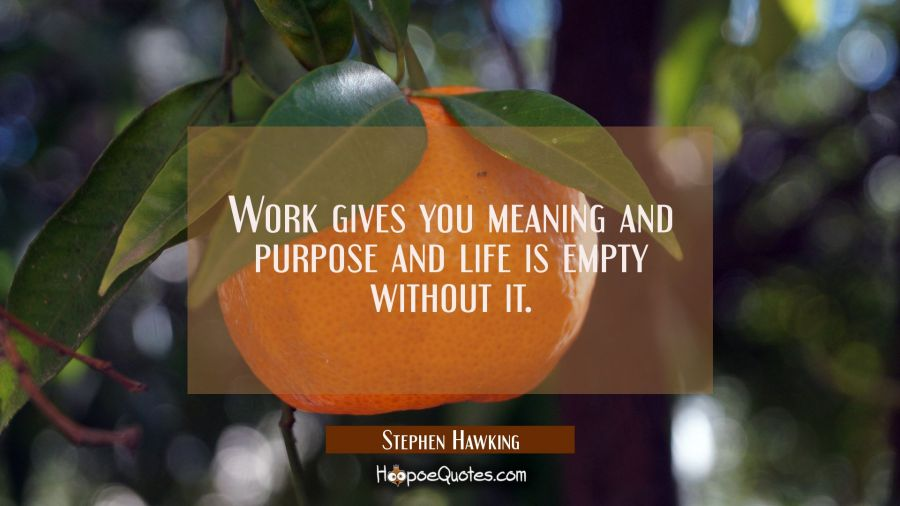 Work gives you meaning and purpose and life is empty without it. Stephen Hawking Quotes