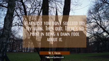 If at first you don't succeed try try again. Then quit. There's no point in being a damn fool about