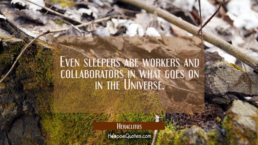 Even sleepers are workers and collaborators in what goes on in the Universe. Heraclitus Quotes