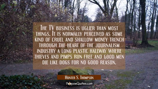 The TV business is uglier than most things. It is normally perceived as some kind of cruel and shal