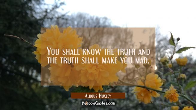 You shall know the truth and the truth shall make you mad.
