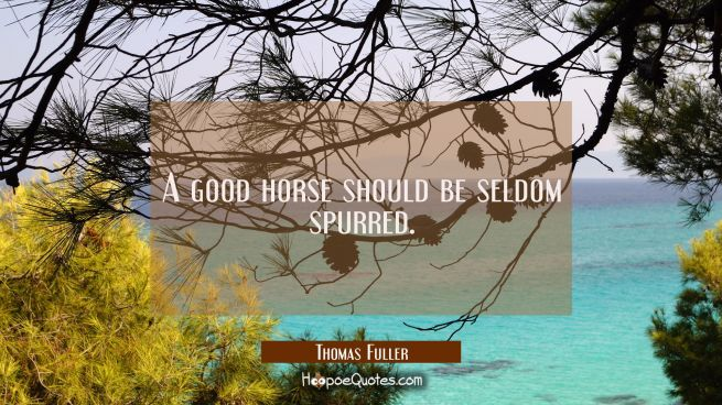 A good horse should be seldom spurred.
