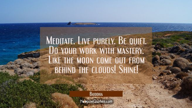 Meditate. Live purely. Be quiet. Do your work with mastery. Like the moon come out from behind the