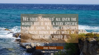 We sold 'Seinfeld' all over the world but it was a very specific kind of show. In some countries it