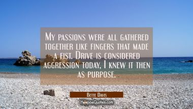 My passions were all gathered together like fingers that made a fist. Drive is considered aggressio